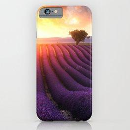 Lavender Sunset iPhone Case