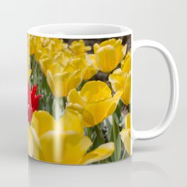 Many yellow tulips and one red Coffee Mug