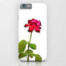 Magenta Red Rose iPhone 6s Slim Case