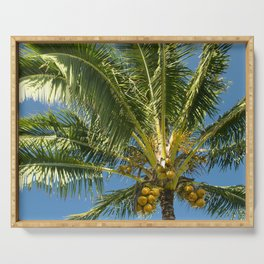 Hawaiian Coconut Palm Tree Serving Tray