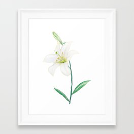 white lily watercolor Framed Art Print