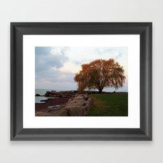 Edgewater Park Framed Art Print