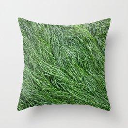 Sea Kelp Texture Throw Pillow