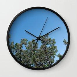 sky blossoms Wall Clock