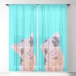 Baby Pig Turquoise Background Sheer Curtain