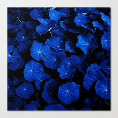 blue leafs XIV Canvas Print