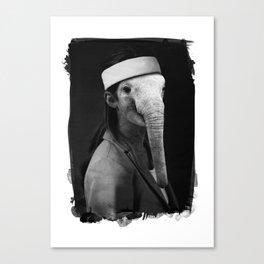 N°1 Canvas Print