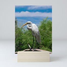 Great Egret Two - Utah Mini Art Print