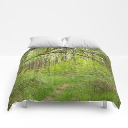 Forest Arch Trail Comforters