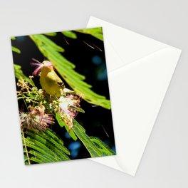 Mimosa mouthful Stationery Cards