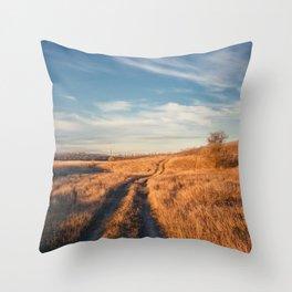 long trail Throw Pillow