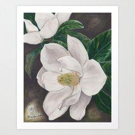 PawPaw's Magnolias Art Print