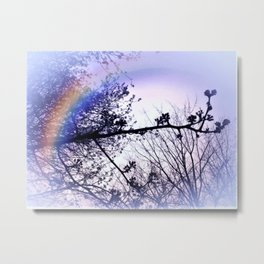 A Day For A Rainbow Metal Print