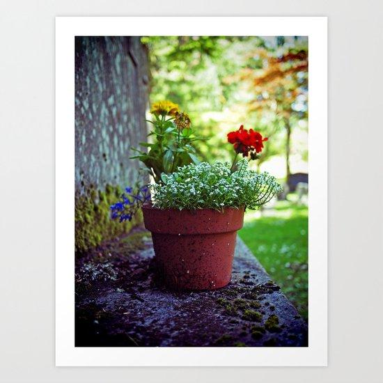 Cemetery plant Art Print
