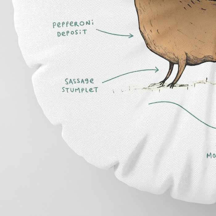 Anatomy of a Dachshund Floor Pillow