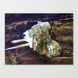 View of Giant Sequoias from Inside a Fallen Sequoia Canvas Print