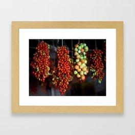Tomatos Framed Art Print