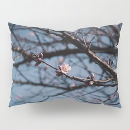Almost spring Pillow Sham