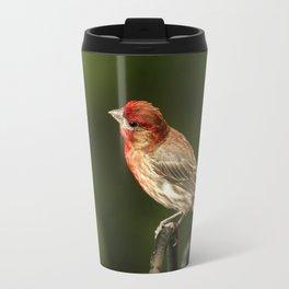 House Finch Travel Mug