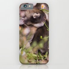Easter babies Slim Case iPhone 6s