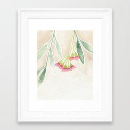 Gum Tree Sketch Framed Art Print