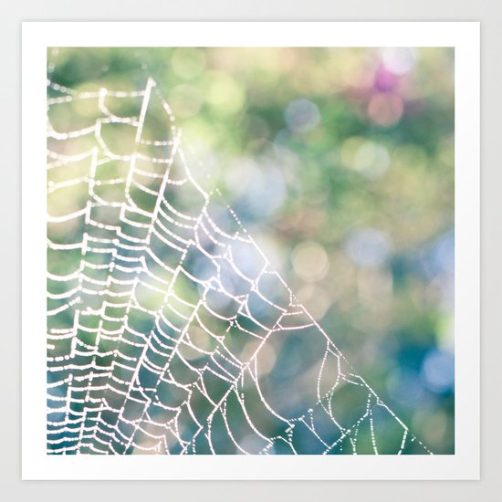 Spotted Web Art Print