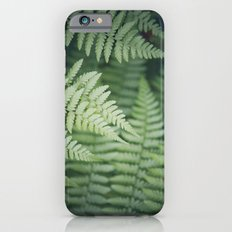 Where the Redwood Fern Grows Slim Case iPhone 6s