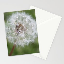 Dandelion in the Fluff Stage Stationery Cards