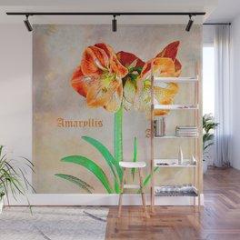 Amaryllis Amore Wall Mural