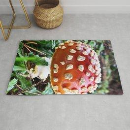 Baby Fly Agaric Mushroom by Seasons Kaz Sparks Rug