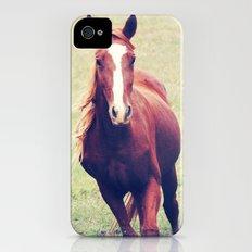 BEAUTIFUL HORSE iPhone (4, 4s) Slim Case