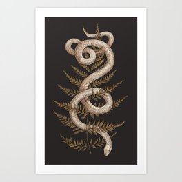 The Snake and Fern Art Print