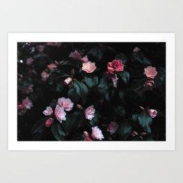 Natural Flower Pattern Art Print