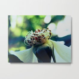Disheveled flower Metal Print