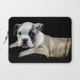 Brindle English Bulldog Puppy Looking Directly at the Camera while Laying on a Plush Black Blanket Laptop Sleeve