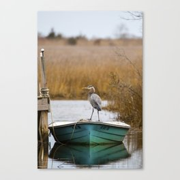 Great Blue Heron on Fishing Boat Canvas Print