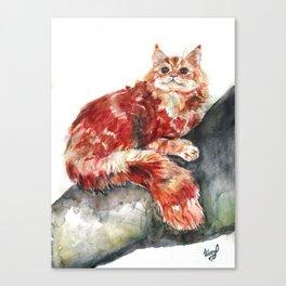 Cat on a tree Canvas Print