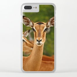 southafrica ... real beauty Clear iPhone Case
