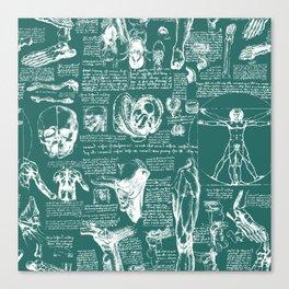Da Vinci's Anatomy Sketchbook // Genoa Green Canvas Print