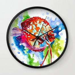 Bright Colored Aquarium Fish, Aquatic Beach Design Discus Wall Clock