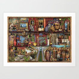 The Museum Shelf Art Print