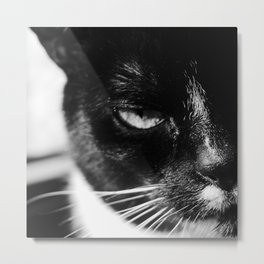 cat Jagoda Metal Print