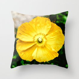 Flower Photography by RedTiger_K Throw Pillow