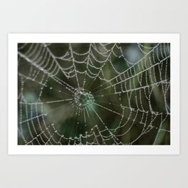webs Art Print