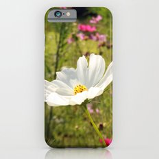 Flowers Under The Sun iPhone 6s Slim Case