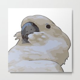 Chubby Blue Eyed Cockatoo Cacatua Ophthalmica Metal Print