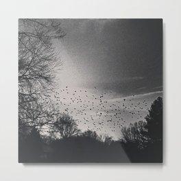 Bird Freckled Sky Metal Print