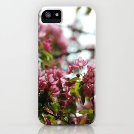 Pink Blossoms #01 iPhone Case