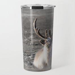 High Arctic Svalbard Reindeer Travel Mug