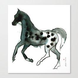 Horse (Leopard) Canvas Print